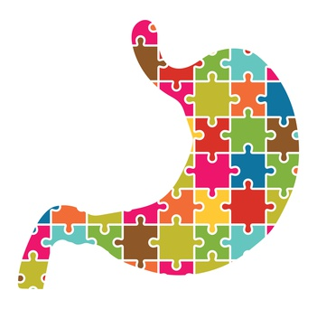 Stomach Jigsaw Puzzle Pieces Abstract